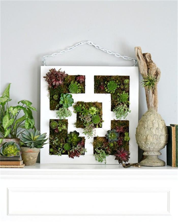 planter-hisheji (12)