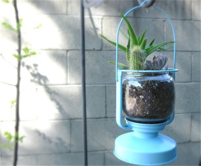 planter-hisheji (4)