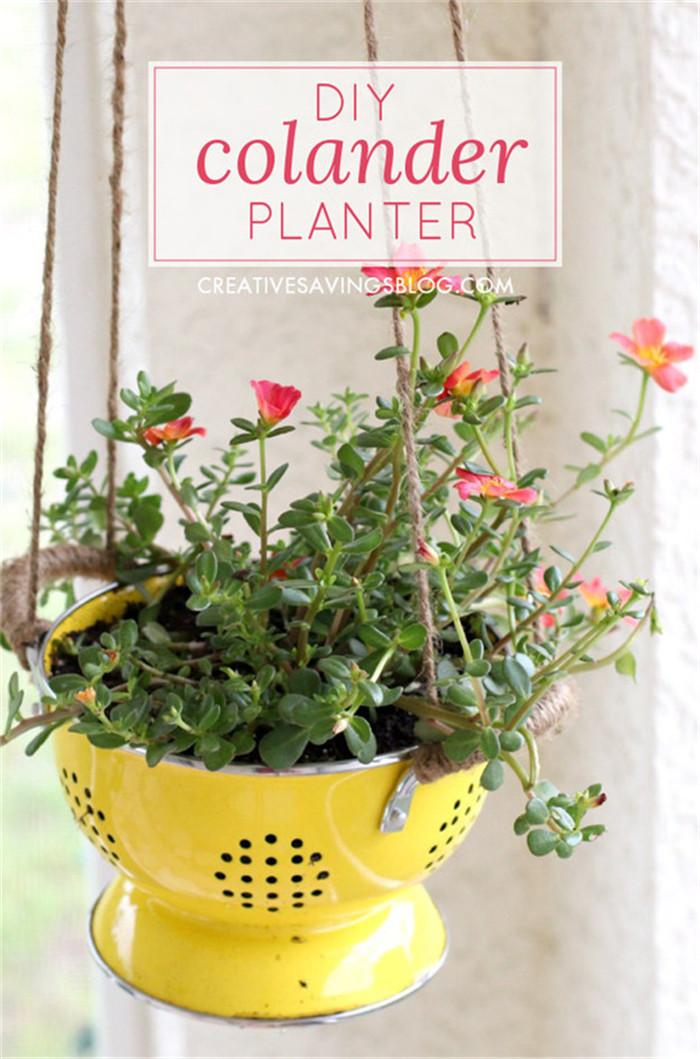 planter-hisheji (7)
