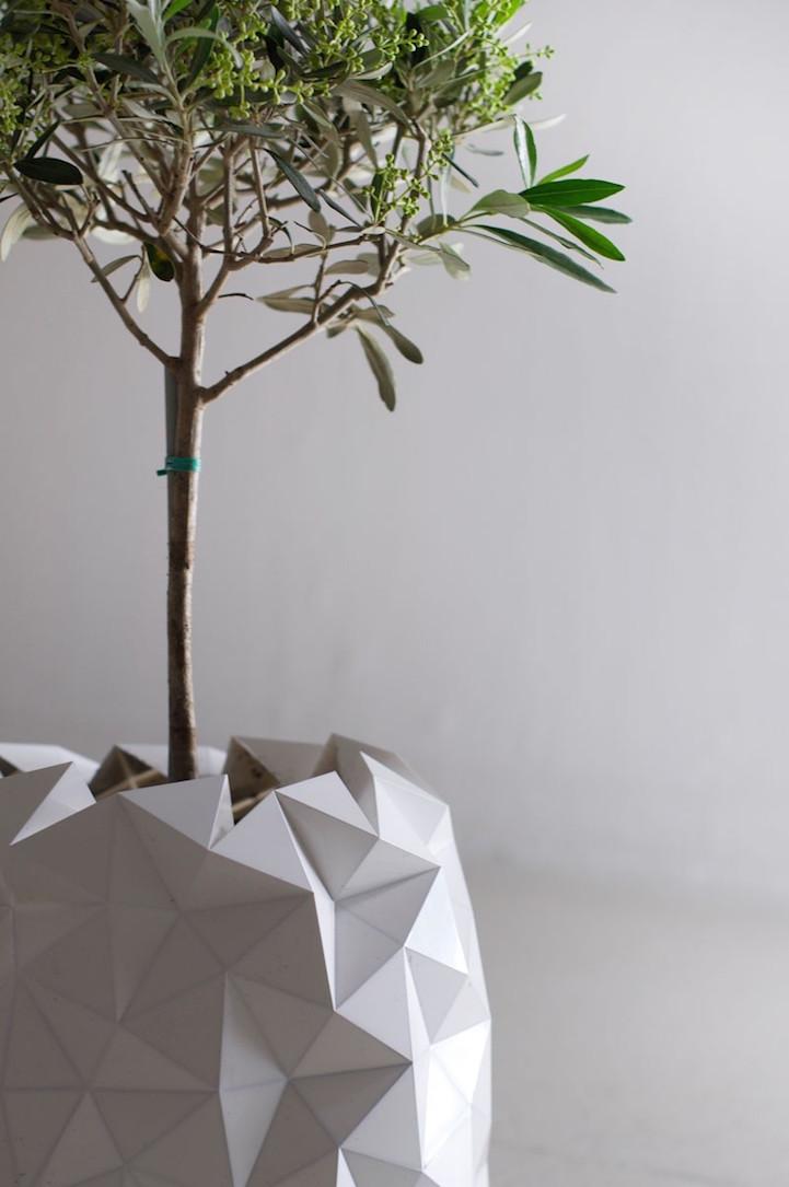 growth-planter-hisheji (5)
