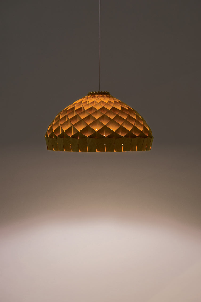 Ed-Linacre-Copper-ID-Nest-Pendant-hisheji (2)