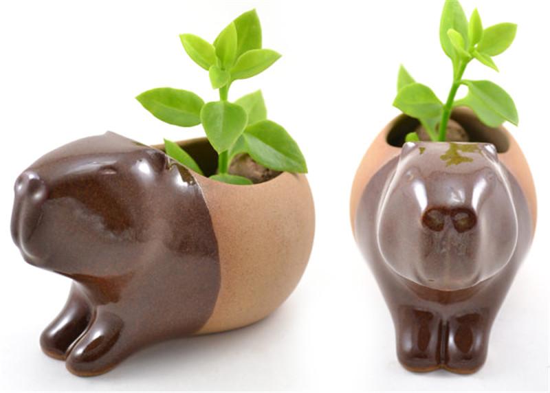 Priscilla-ceramic-planters-hisheji (2)
