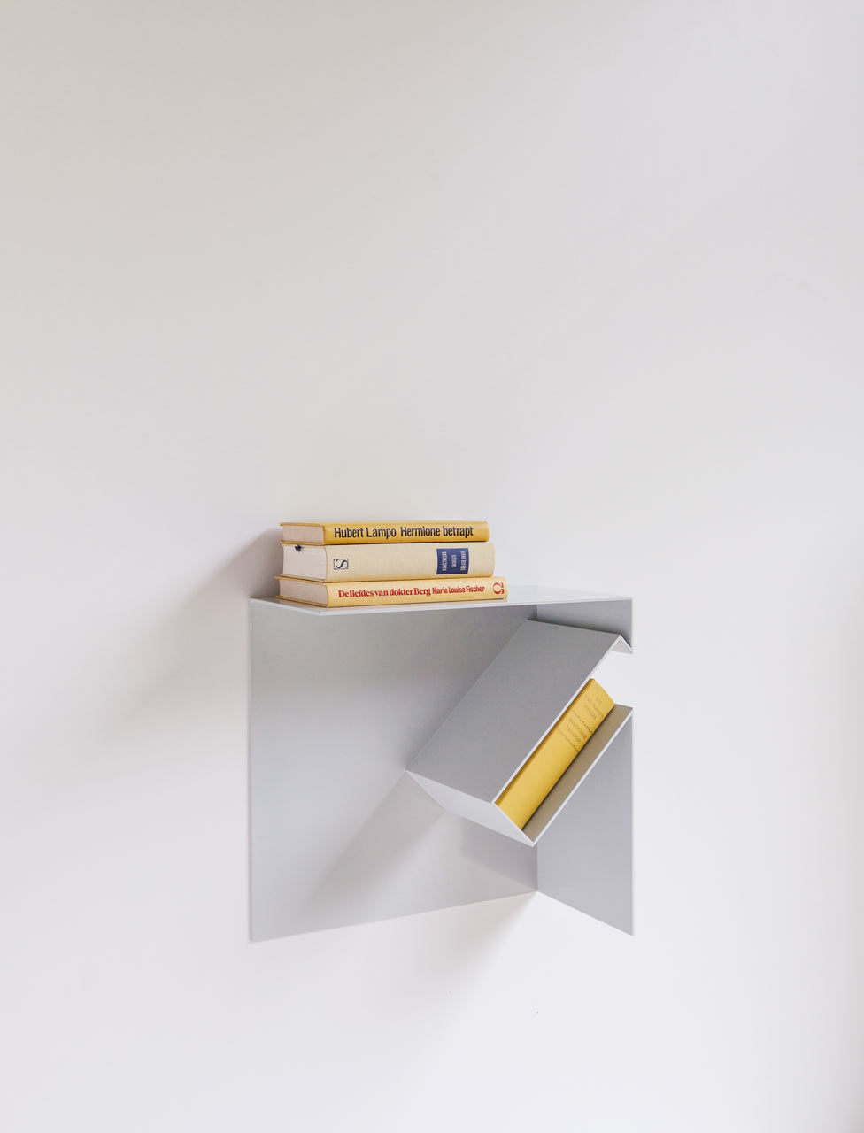 Filip-Janssens-Oblique-bookshelves-hisheji (5)