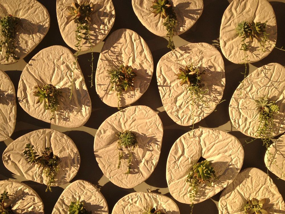 Taeg_Nishimoto-SEEDS-planter-hisheji (17)