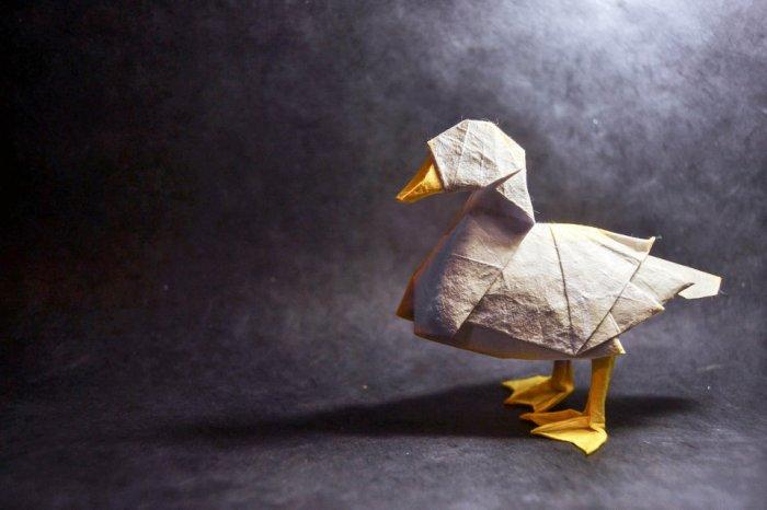 gonzalo-garcia-calvo-origami-hisheji (1)