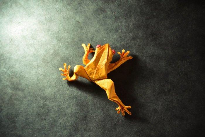 gonzalo-garcia-calvo-origami-hisheji (6)