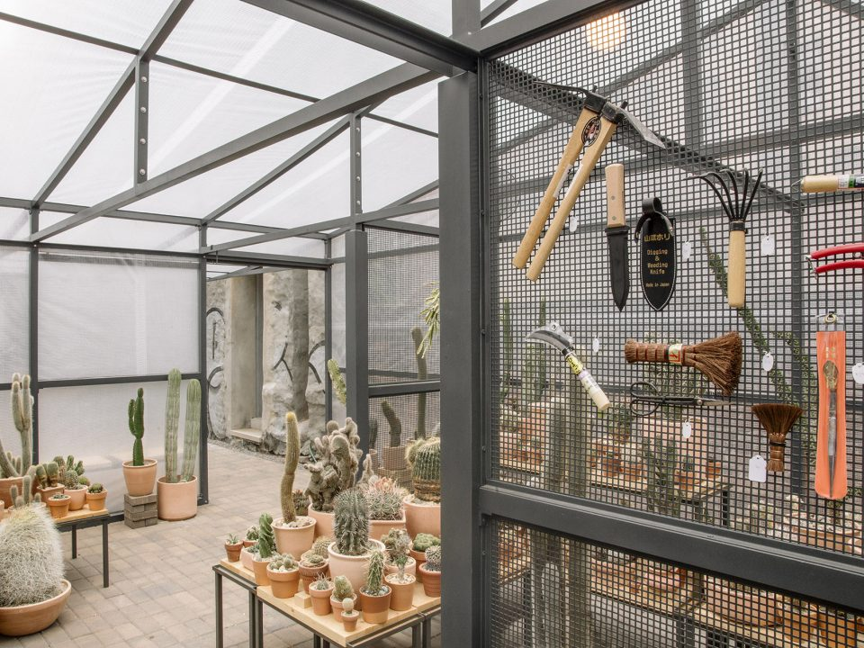 06-New-York-Greenhouse-By-Part-Office-Cactus-Store--960x720