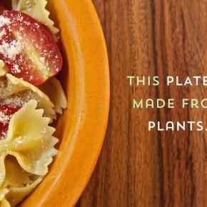 安全环保的超食品级餐具