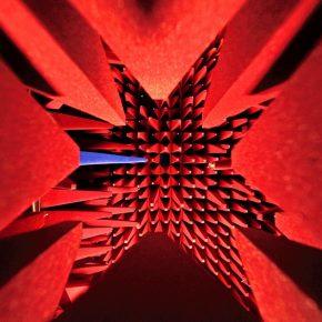 900根红刺组成的敏感神经,你是否有勇气来触碰?