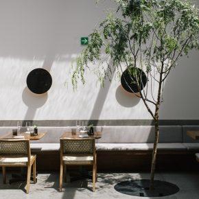 世界前20的墨西哥餐厅,空间设计竟也美得一塌糊涂